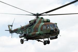 Военный вертолет совершил вынужденную посадку в районе Березы Брестской области