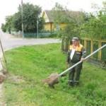 В Берёзе неизвестные вандалы корежат и спиливают дорожные знаки