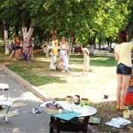 В Полоцке появились деревья с орнаментом (ФОТО)