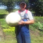 Гигантские грибы. Удивительные находки этого лета